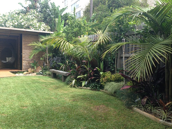 Tropical oasis garden northern beaches balinese style for Garden design with palms